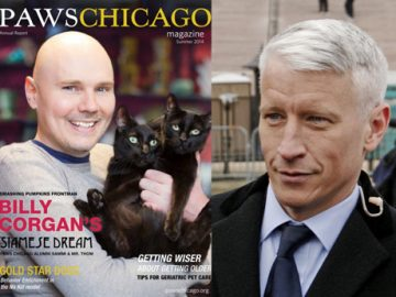 Billy Corgan Anderson Cooper